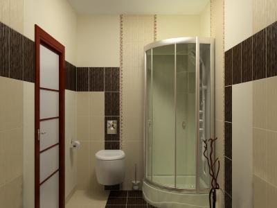 gebrauch duschabtrennungen sanit r baden duschen. Black Bedroom Furniture Sets. Home Design Ideas